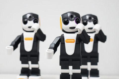 RoBoHon – smart robot pre smart domácnosti
