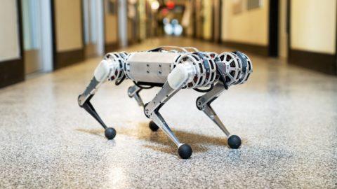 Robot Mini Cheetah z MIT-u porazí v behu aj Vás.